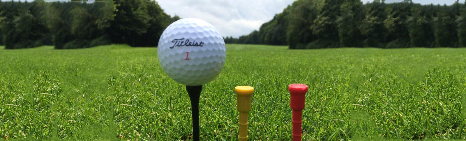 Golfbal op veld